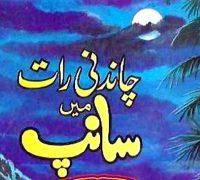 چاندنی رات میں سانپ ناول از اے حمید