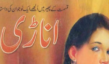 Anari Novel Complete 9 Volumes by Ahmad Iqbal